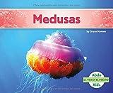 Medusas (La Vida En El Oceano /Ocean Life)