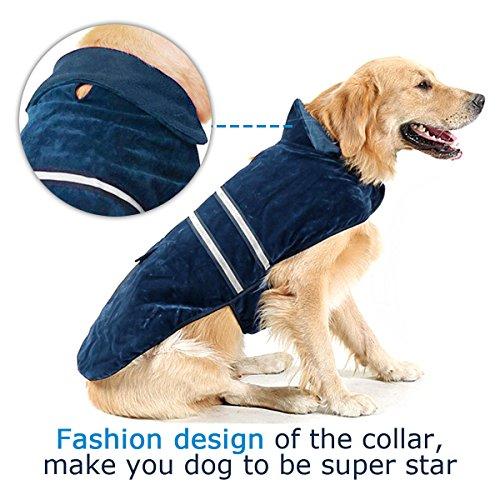 Poppypet Hundemantel, Winterjacke Hundebekleidung Herbst Weste Hundejacke Wintermantel Der modische Mantel ist perfekt fuer kalte Winter (Achten Sie bitte auf die Groesse) Blau L - 3