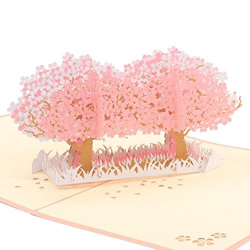 Omshanti Tarjeta de Felicitación Pop Up 3D   Regalo Único para Ocasiones Especiales   Diseño y Construcción de Primera Calidad   Carta Alternativa Estilizada para Cumpleaños, Agradecimiento, Fiesta