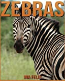 Zebras: Children Book of Fun Facts & Amazing Photos on Animals in Nature - A Wonderful Zebras Book for Kids aged 3-7
