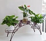AISHN Pflanzenstander Blumentopfe Regal Blumenkasten Stand Blumenhocker Regal