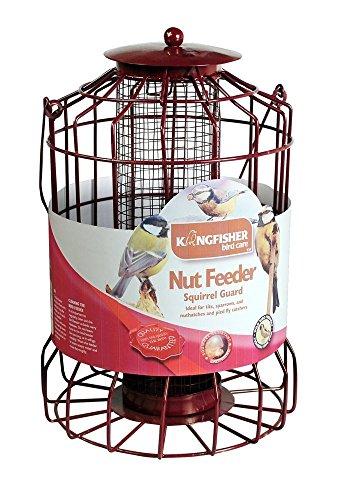 Kingfisher Natures Marché Bf007/Bf007s/Bf007fb écureuil Guard à Suspendre Écrou de graines de suif mangeoires - Multi Deals Disponible