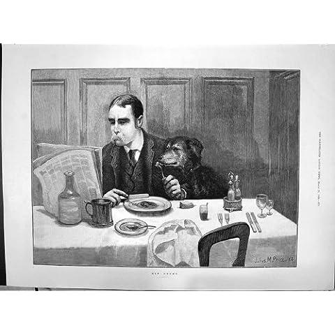 Un Bandito Anziano di 1890 degli Amici dell'Uomo del Cane di Pranzo della Tabella di Prezzi del Mercato Ittico Strade di Dover