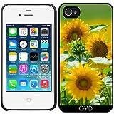 Hülle für Iphone 4/4S - Sonnenblume Sonne Natur by WonderfulDreamPicture