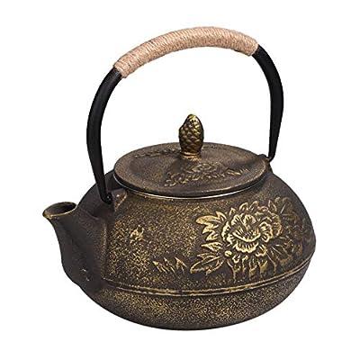 Lecxin Théière en Fonte, Théière de Bouilloire en Fonte de Style Japonais 900 ML + infuseur Amovible/passoire à thé Pot à café