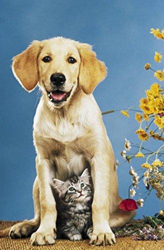 Parker House Rolls ((24x 36) MR Big & Mrs Little (Dog & Cat) Art Poster Print)