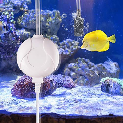 Karidge Sauerstoffpumpe Aquarium Mini Luftpumpe Leise Aquarium Pumpe Klein Luftpumpe Aquarium Oxygen Luftpumpe Für Aquarium mit Air Stone und Silikonschlauch weiß
