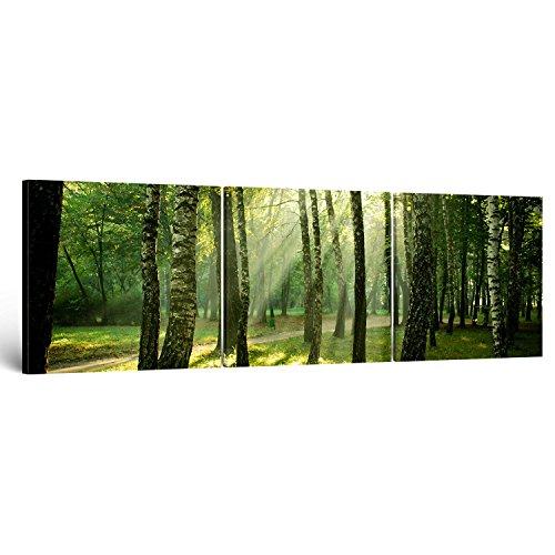 """ge-Bildet® Quadro su tela panorama """"foresta"""" - 150x50 cm 3 Parti - direttamente dal produttore dalla Germania - Made in Germany"""