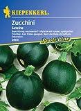 Zucchini Satelite