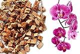 Kokos Chips lose - Orchideensubstrat - 10 Liter Beutel