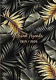 Grand Agenda 2019/2020: 17 mois journalier 2019-20 - grand format A4 - août 2019 à décembre 2020 - planificateur, semainier simple & graphique, motif Feuille de Palmier Tropical or et noir