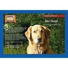 Kamishibai: Der Hund: 10 Fotobildkarten für das Erzähltheater (Fotobildkarten Kamishibai)