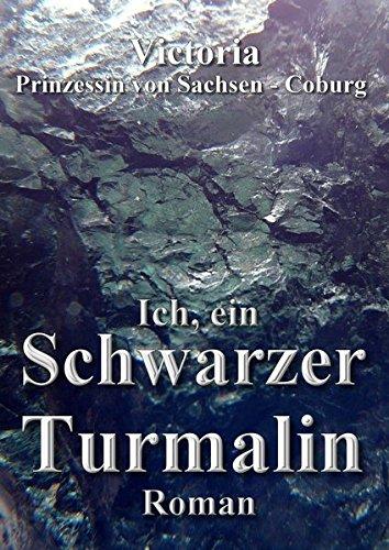Ich, ein Schwarzer Turmalin: Ein Roman über den Werdegang und die Anwendungsmöglichkeiten eines schwarzen Turmalins.