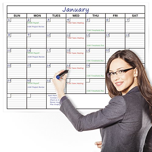 delane-large-wet-and-dry-erase-dry-wipe-wall-calendar-planner-61-x-91cm-bonus-foam-mounting-pieces-i