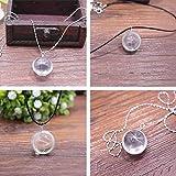 Huyizhi Glaskugel Anhänger Halskette, Löwenzahn Halskette Frauen Halskette für Hochzeit Urlaub, Silber
