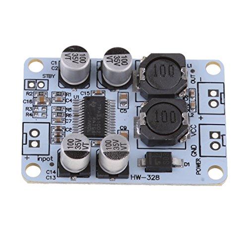 Homyl Mono Digital-Verstärker-Board Modul 30W Verstärkerplatine