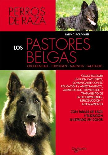 Los pastores belgas (Animales)