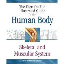 The Illustrated Guide To The Human Body: Skeletal And Muscular System
