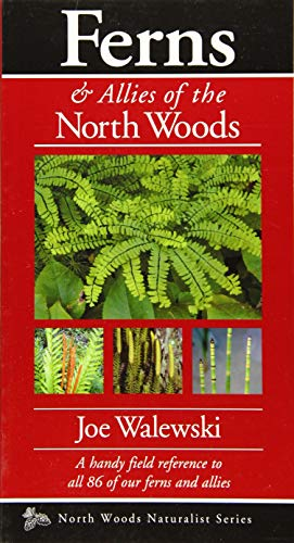 Ferns of the North Woods: Including Horsetails & Clubmosses (Naturalist Series)