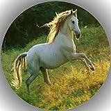 Premium Esspapier Tortenaufleger Tortenbild Geburtstag Pferde N6
