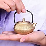 FLAMEER Mini Asiatische Gusseisen Teekanne, 50ml, Asia Japan Style Teekessel Wasserkocher
