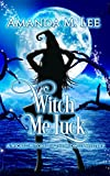 Wicked Witches of the Midwest Kindle eBooks