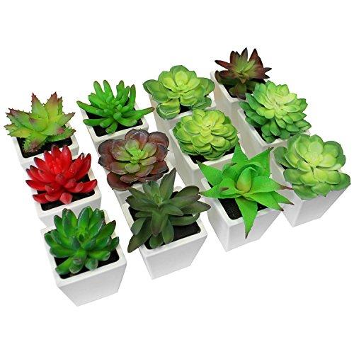 12er Sukkulenten Set Kunstpflanzen Kunstblumen Topfpflanzen Dekopflanzen Pflanzentopf Blumentopf Decor - Kunststoff, je 8x8x12-15cm