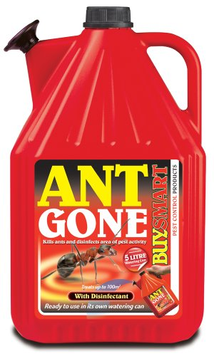 buysmart-products-5l-ant-gone-ready-to-use-in-its-own-unique-watering-can