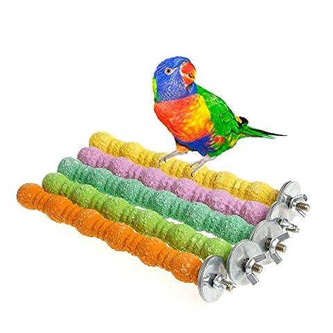 Dairyshop Pet Bird Bites Parrot Chew Toys Cage à suspendre calopsitte élégante perruche support plate-forme