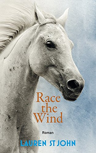 race-the-wind-one-dollar-horse