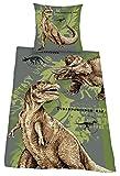 Herding 445101050 Bettwäsche Dinosaurier, Kopfkissenbezug: 80 x 80 cm + Bettbezug: 135 x 200 cm, 100 % Baumwolle, Renforce