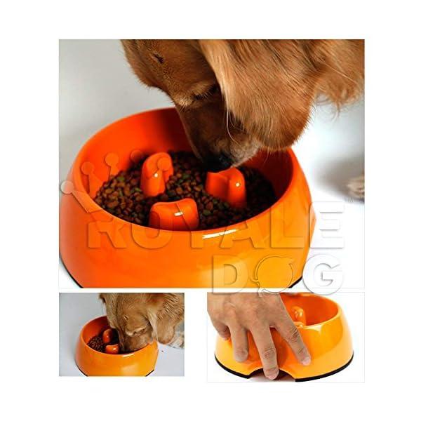 Royale Dog Durable Anti Gulp Non Skid Slow Feed Pet Bowl Healthy