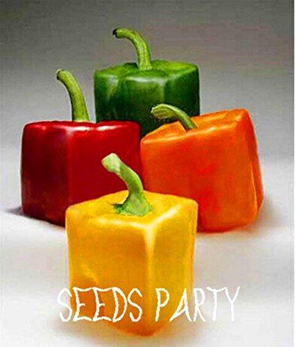 Les plus rares mixtes Graines Orange Vert Rouge Jaune Carré poivrons, 100 pièces / lot, légumes Tasty comestibles, # GETL1U