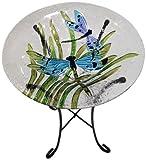 Continental Art Center cac2409641Vogeltränke Glas Schüssel, 13von 2Zoll, Libellen