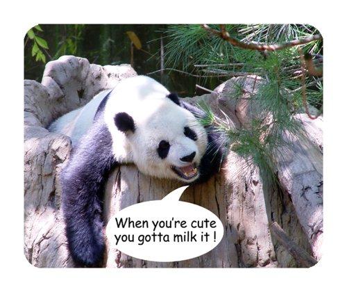 snuggle-tappetino-per-mouse-a-forma-di-panda-wildlife
