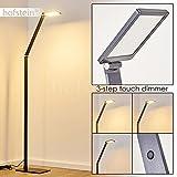 LED Stehleuchte Muture in Dunkelgrau – Standlampe für Wohnzimmer - Büro - Schlafzimmer – Bodenleuchte mit 3-Stufen Touchdimmer - mit Gelenk und verstellbarem Leuchtenkopf - 3000 Kelvin - 580 Lumen
