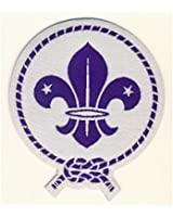 World Scout Emblem Glow in the Dark Fun Badge