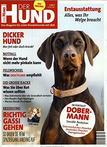 Der Hund [Abonnement jeweils 12 Ausgaben jedes Jahr]