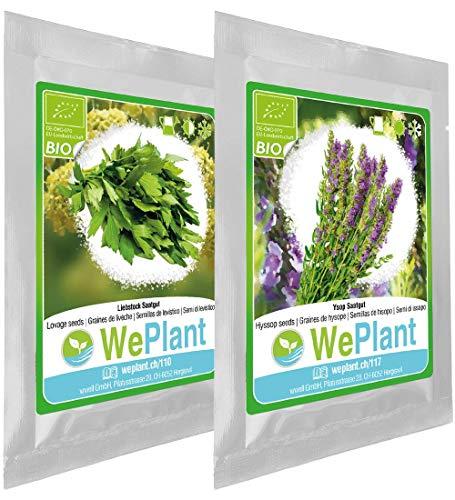 BIO Liebstock & Ysop Pflanzen-Samen Set - indoor/outdoor