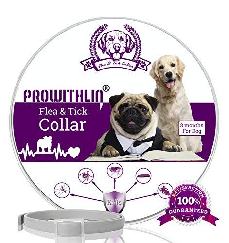 Prowithlin Collar Antiparasitario Perros