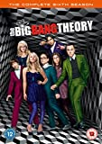 The Big Bang Theory : The Complete Sixth Season [Edizione: Regno Unito] [Italia] [DVD]