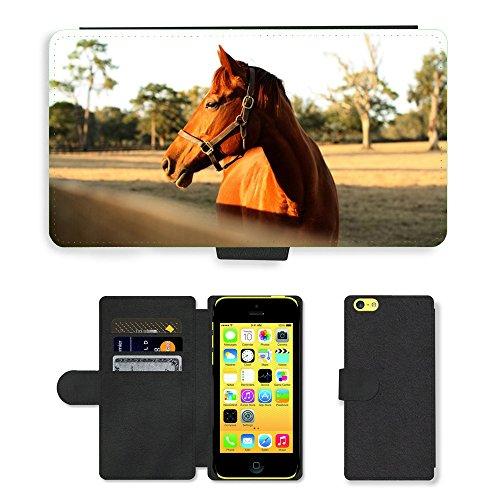 Just Mobile pour Hot Style Téléphone portable étui portefeuille en cuir PU avec fente pour carte//m00139269Cheval Ferme lumière clôture Animal//Apple iPhone 5C