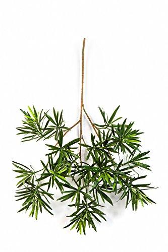 artplants – Kunst Podocarpus Zweig CHIKO mit 440 Blättern, grün, 65 cm – Zweig künstlich/Deko Zweig