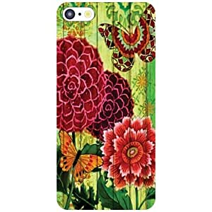 Back Cover For Apple iPhone 5C (Printed Designer)
