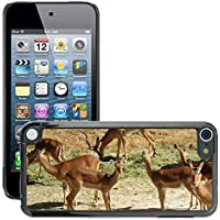 Carcasa Funda Prima Delgada SLIM Casa Case Bandera Cover Shell para // M00111444 Antelope Impala Horns Mammiferi // Apple ipod Touch 5 5G 5th - Impala Horn