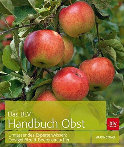 das-blv-handbuch-obst-umfassendes-expertenwissen-obstgeholze-beerenstraucher