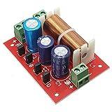 2Pcs NEW Regolabile alti/bassi divisore di frequenza audio altoparlanti a 2 vie crossover Filtri