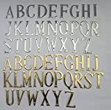Ironmongery World® 7,6 cm/75 mm massivem Messing Haus Tür Alphabet Buchstaben Tür Name Schild etc. (D – Satin Chrom gebürstet)