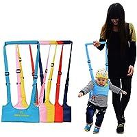 Reizbaby Asistente de Caminar Bebé Walk Helper Bebe Aprenda a Caminar Cinturon Arnes de Seguridad