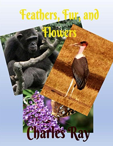 Feathers, Fur, and Flowers (English Edition)